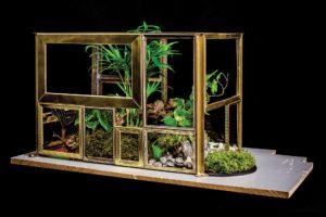 Grădină miniaturală 2