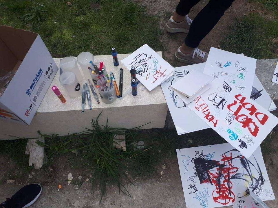 "Molotow România X Liceul de Arte ""Regina Maria"", Alba Iulia 13"