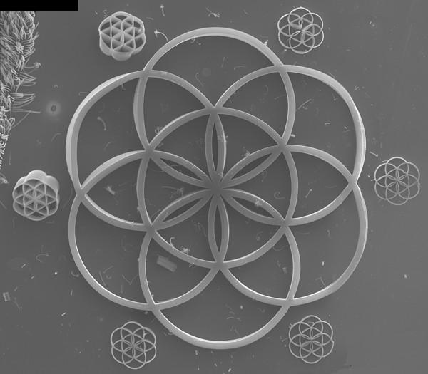 Nano - Roata Vieții