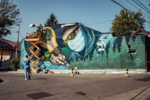 Street Delvery 2020 - Resoluții, Iași